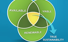 teaser_True_Sustainability